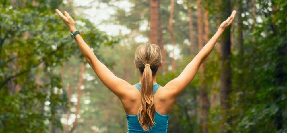 Sonidos de la naturaleza para ayudarnos a mejorar nuestra calidad de vida