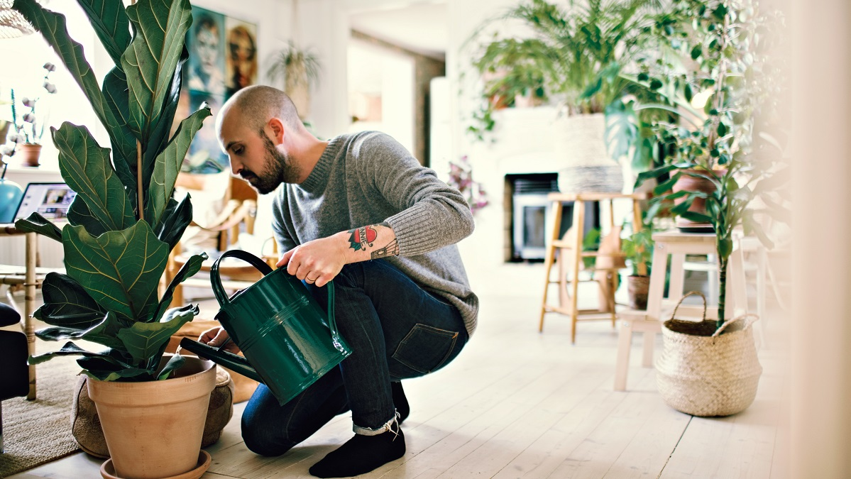 Full Length Of Man Kneeling While Watering Potted Plant At Home
